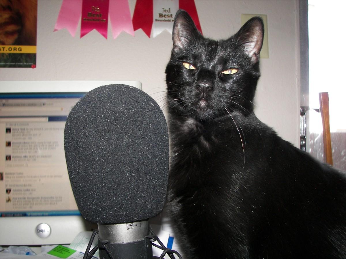 De ketenradio's zijn terug op FM